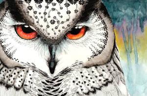 Owl by antler-remnants