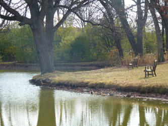 Pond on a Sunny Day by awcook333
