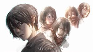 some Mikasa sketches