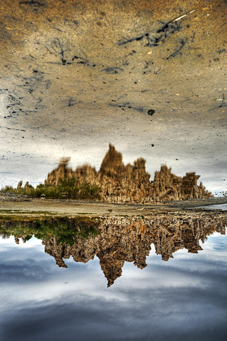 Alien Landscape 1.3 by geolio