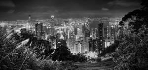 Skyscrapper Metropolis