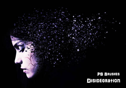 20 Disidegration PS Brushes abr