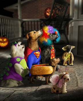 Trick or Doggy Treat