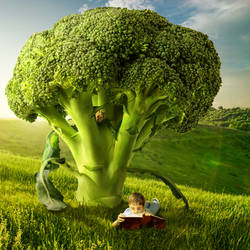 Broccoli Tree by Shorra
