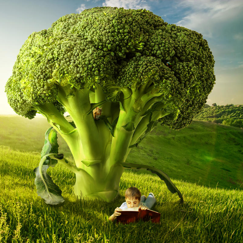 Broccoli Tree by Shorra