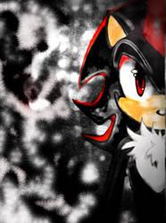 Shadow of a Hedgehog