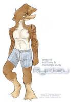 Ryotsu Anatomy Study by gabfury