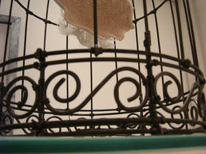 cage detail