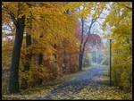 November Promenade