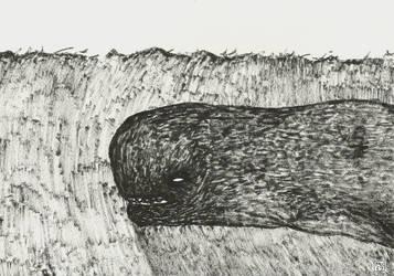 Dark Whale by mekkasop
