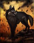 Dark Wolf of Twilight