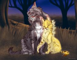 Feline Love