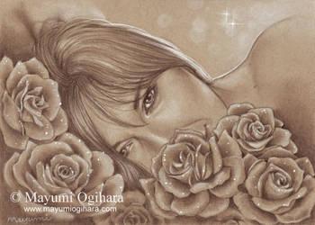 Spring Rose by MayumiOgihara