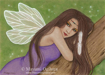 Wild Fairy by MayumiOgihara