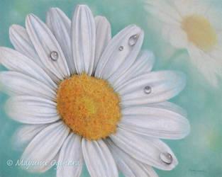 Daisy Dream by MayumiOgihara