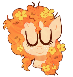 buttercup by spacescoob