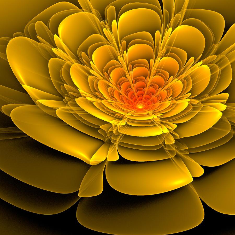 Bloom by DeTea