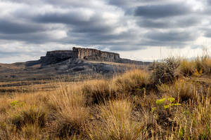 Shannon Outcrop - Midwest, Wyoming by DeTea