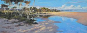 Flinders Beach by postapocalypsia