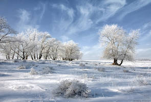 Classical russian winter