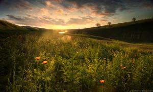 daybreak by doberman4ik