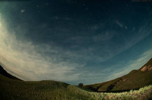 starry day by doberman4ik