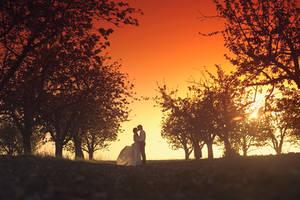 wedding 12 by doberman4ik