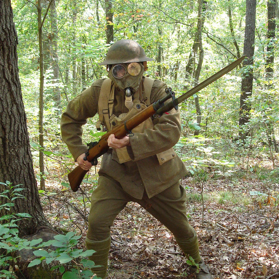 a review of the book doughboy war the american expeditionary The american expeditionary force, siberia (aef in siberia) was a formation of the united states army involved in the russian civil war in vladivostok, russia, during.