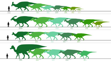 Almost Every Lambeosaurine in Chart Form