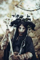 Forest witch with skull stock