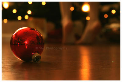 Don't Forget This Year. by sa-photographs