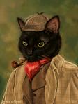 Sherlock Nitro