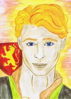 Henry II. Plantagenet by RowanLewgalon