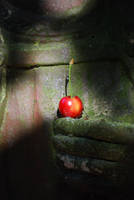 Cherry by RowanLewgalon