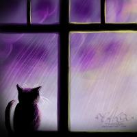 -+-Watching the rain-+- by TalviEnkeli