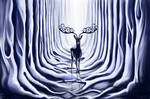 -+-Elven Forest-+-