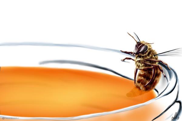 Honey pool