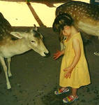 Me with some deers