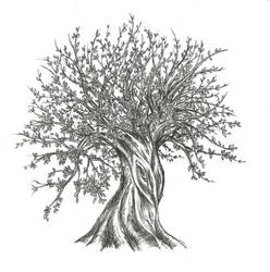 Misc. Art: Inked Tree