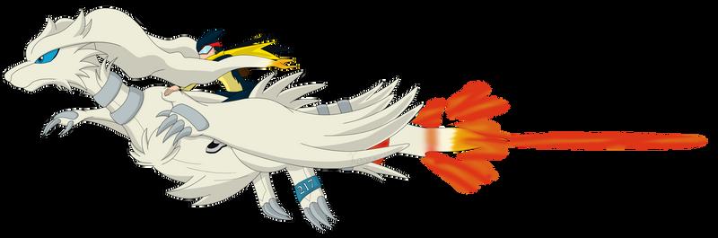 Pokemon Sky Race Entry - 217