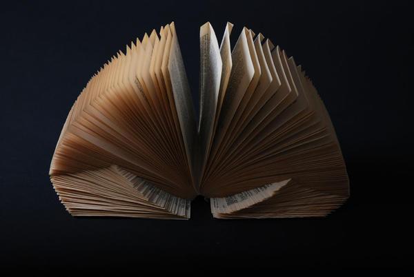 book sculpture 4 by vanawillemiel
