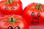 crazy tomato's