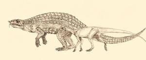 stagonolepis, Silesaurus