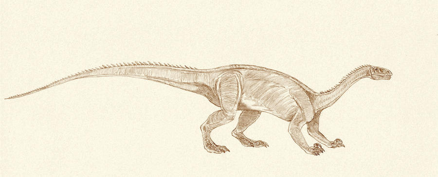 Anchisaurus by Kahless28