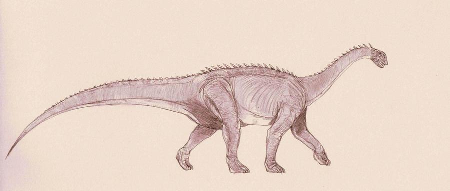 barapasaurus - photo #8