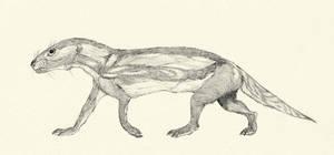 Boreogomhodon