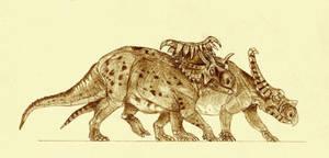 Kosmoceratops and Vagaceratops