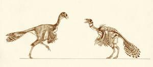 Caudipteryx dongi by Kahless28