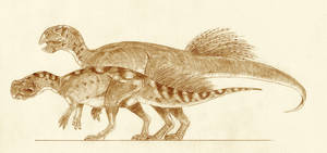 Psittacosaurus lujiatensis