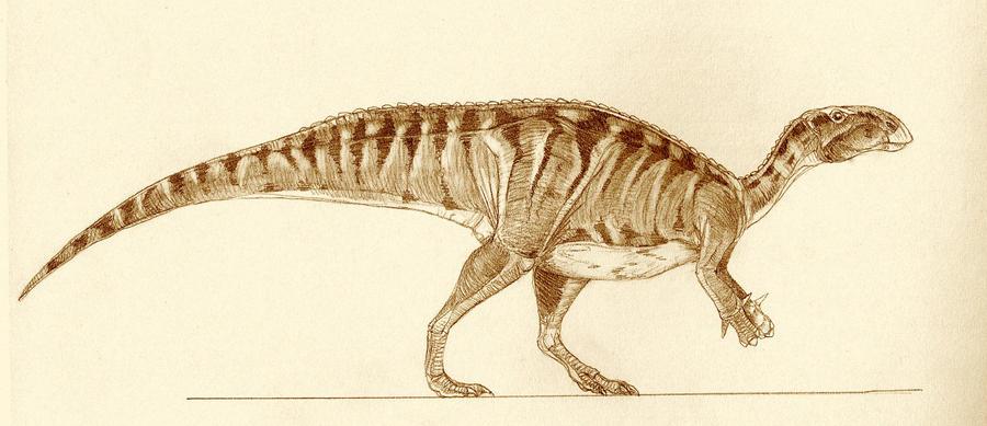 Jinzhousaurus yangi